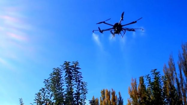 Copter drone spraying fruit trees