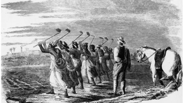 dehumanization of enslaved africans in jamaica The fifty-four africans were kidnapped in west africa, near modern-day sierra leone, and illegally sold into the spanish slave tradethey were transported to cuba, fraudulently classified as native cuban slaves, and sold to two spaniards.