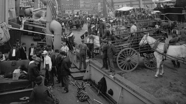Região conhecida como Banana Docks, no píer de Nova York, no início do século 20
