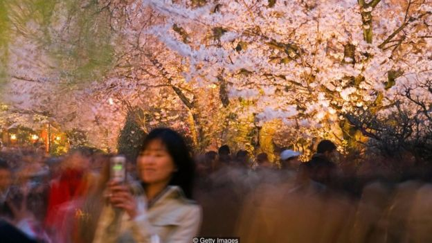 Wabi-sabi là từ trong ngôn ngữ Nhật Bản nhàm để mô tả cảm giác tận hưởng vẻ đẹp diễn ra thoáng chốc, dang dở - như khi ngắm hoa ạnh đào nở rộ