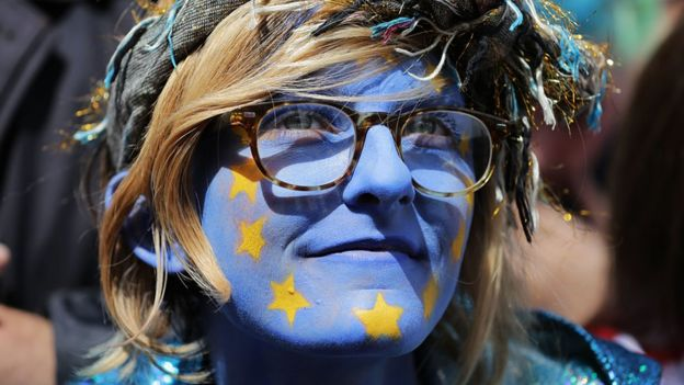Pro-EU campaigner