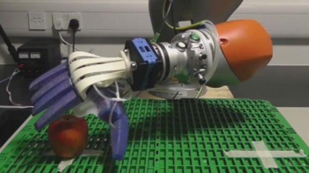 fruit picking robot hand