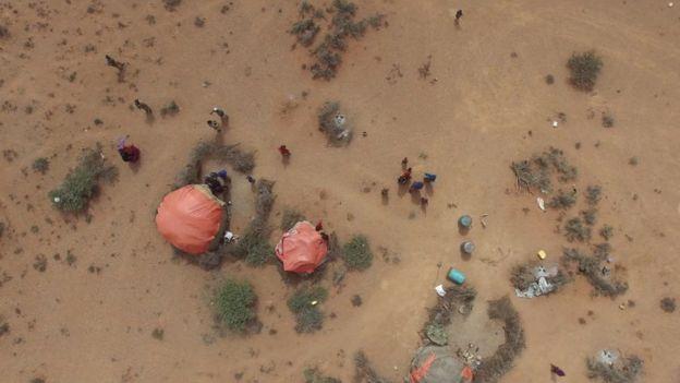 Dry Somalia landscape