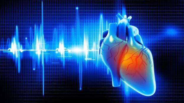 Una ilustración digital del corazón humano