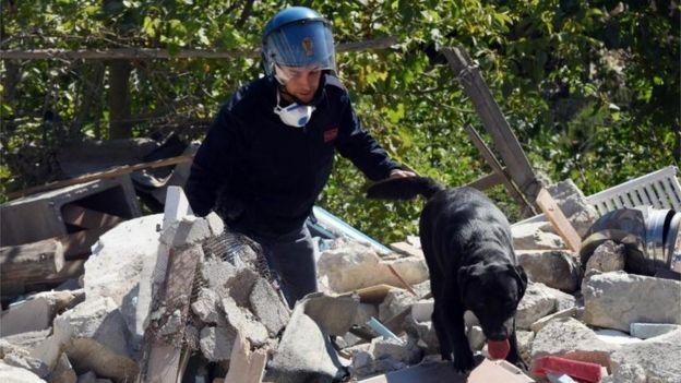Un policía un su perro buscan entre los escombros.