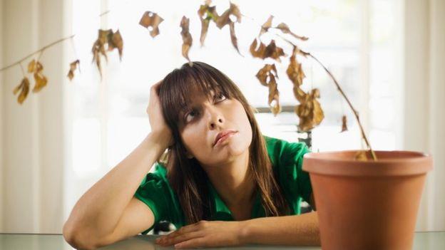 Una mujer que mira, triste, una plantita que murió