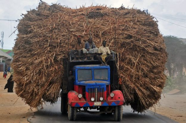People sit on the top of a truck heavily piled with corn-stalks plies as they head for Mogadishu from Afgoye on October 19, 2016.
