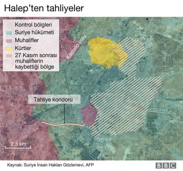 Halep haritası