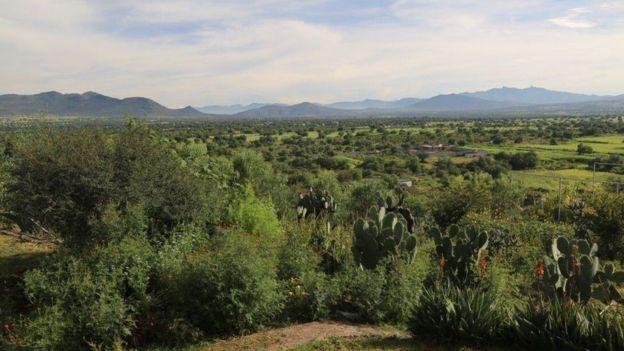 Fazenda Hidalgo, no México