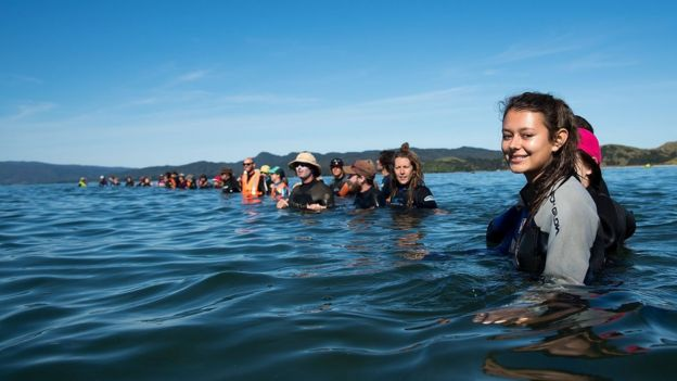 Jóvenes sumergidos hasta el pecho haciendo una barrera humana para impedir el varamiento de un nuevo grupo de ballenas