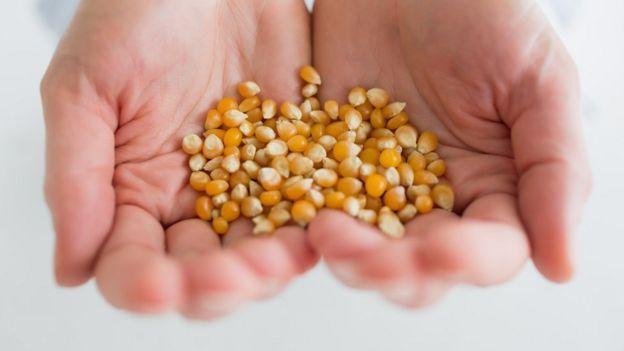 Preço do milho no Brasil sobe impulsionado pelo valor no mercado internacional