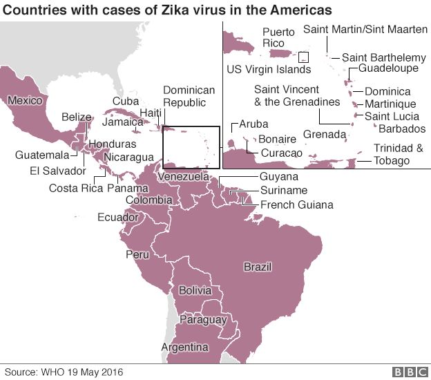 Zika Virus Symptoms Facts And Affected Countries: Zika Crisis: WHO Rejects 'move Rio Olympics' Call