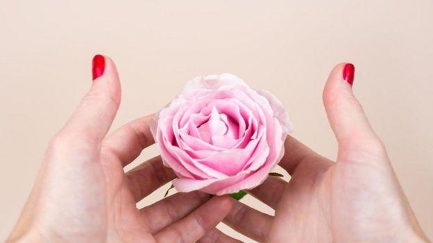 Unas manos de mujer sosteniendo una rosa