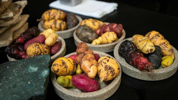 Algunas de las papas utilizadas en el restaurante Central de Lima.