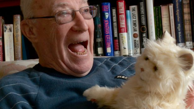 Meet the robotic cat for the elderly ilicomm Technology Solutions