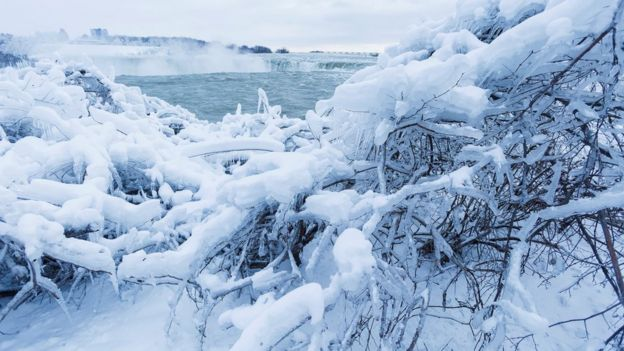 Ice and snow cover branches near the brink of the Horseshoe Falls in Niagara Falls, Ontario, Canada
