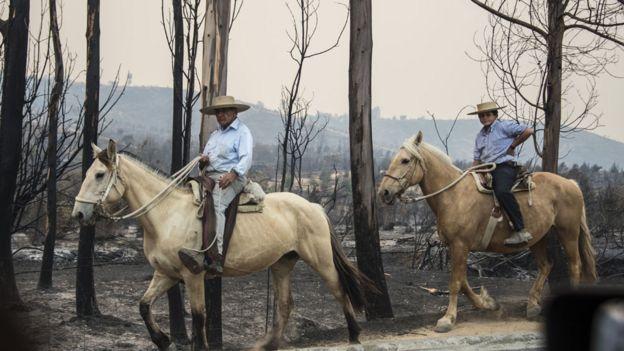 Chilenos en incendio
