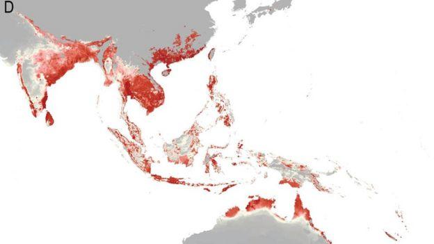 _89334363_e2c4bffb-34a0-42f8-9290-b2e1fb18e94d Zika Virus: 2.2 Billion People ˜At Risk'