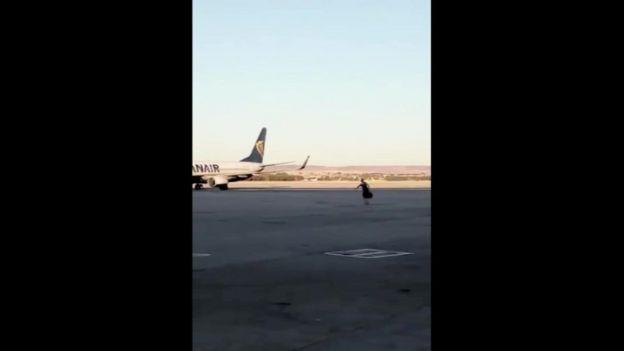 Man alone on tarmac running towards plane