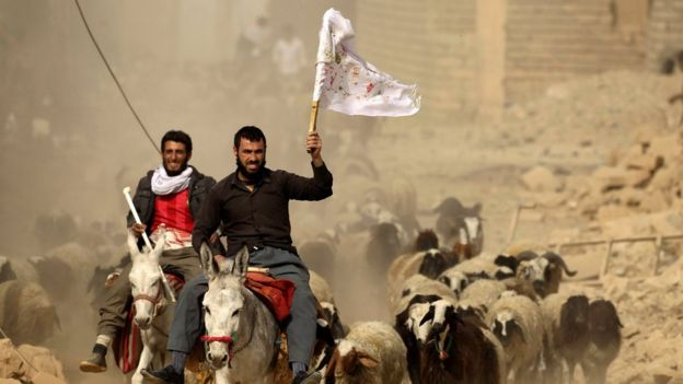 Iraqi men wave white flags as they ride donkeys towards special forces troops in Bazwaya, east of Mosul (1 November 2016)