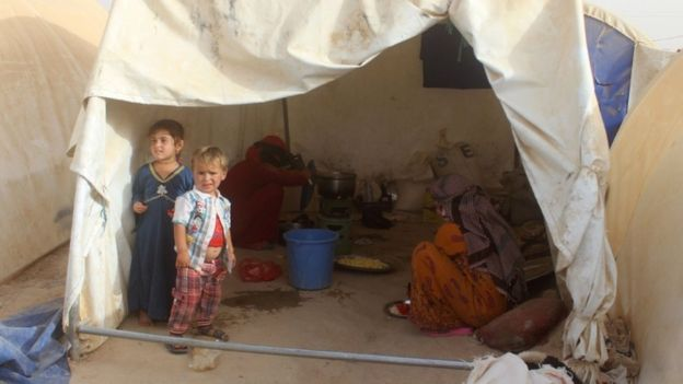 A camp where displaced Iraqis from Falluja are taking shelter, 18 June