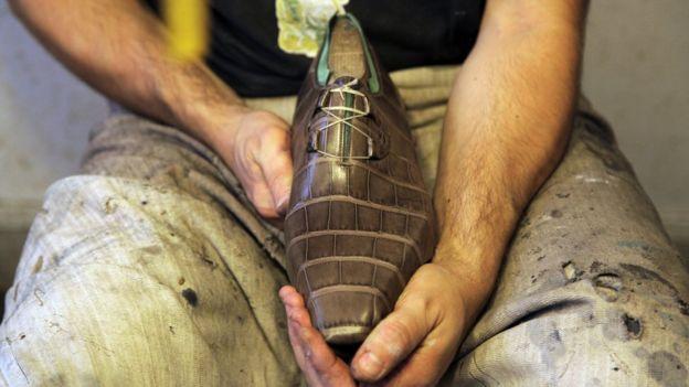A crocodile skin shoe