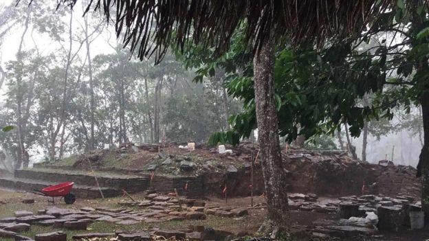 Restos de construcciones en piedra rodeados de árboles en el sitio arqueológico de Nim Li Punit
