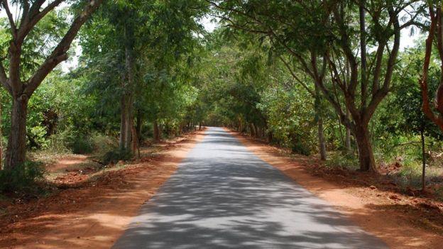 Entrada a Aurovile
