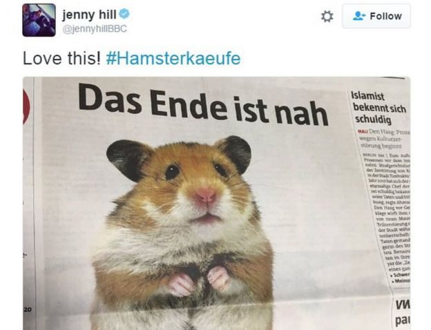 Tweet showing Die Tageszeitung hamster pic