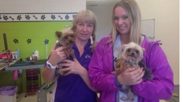 Dog groomers Lianne and Ellie Kent in Queensland with Pistol (left) and Boo on 14 May 2016