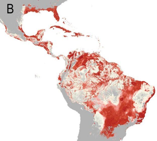 South America risk