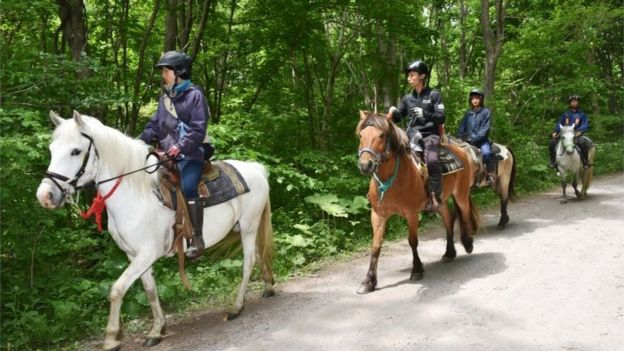 Searchers on horseback in Hokkaido (30 May 2016)