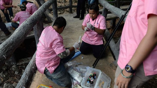 Veterinarians prepare anaesthetic syringes as they prepare to remove tigers from an enclosure at the Wat Pha Luang Ta Bua Tiger Temple