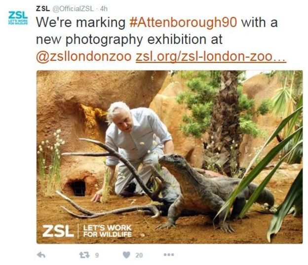 Zoological Society of London tweet