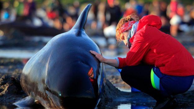 Mujer joven con una mano sobre la piel de una ballena