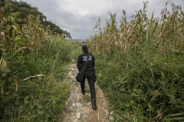 孔奇塔‧洛佩斯走過田野