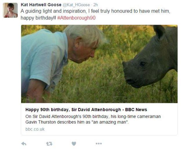 Kat Hartwell Goose tweet
