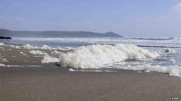 Decaying algal foam on a beach (Image courtesy of Dr Richard Kirby)