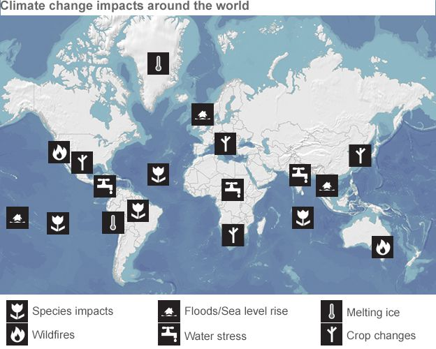 Is climate change one of the most important environmental issues in the world?