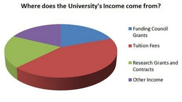Essay: Should Tuition Vary With the Family Income?