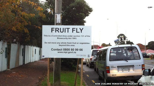 a Fruit Fly Exclusion Zone