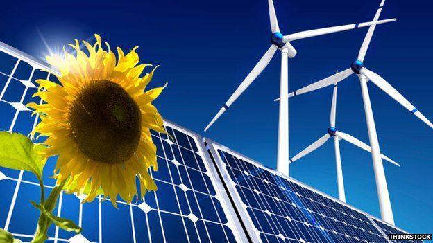sunflower, solar panels, windfarm