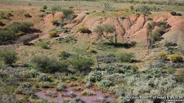 A crater created by a meteorite 4700 years ago in Central Australia