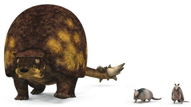 Doedicurus - illustrated here alongside modern armadillos