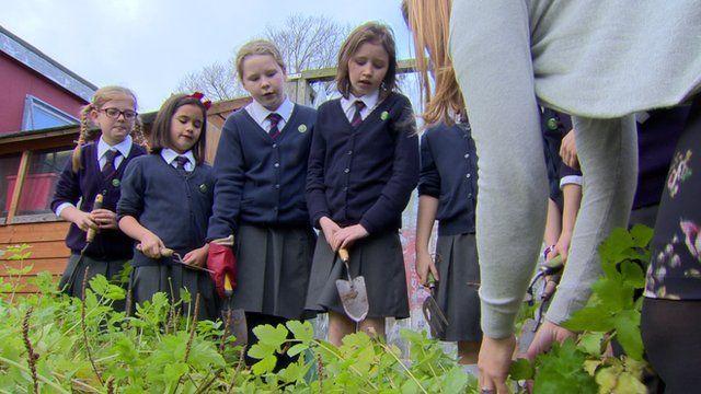 Schoolchildren work in a garden in the school grounds