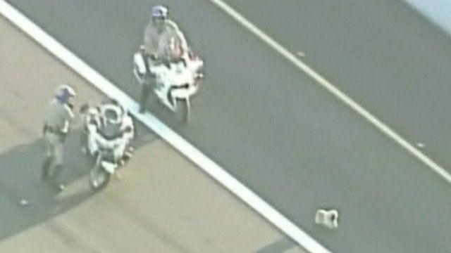 Police try to catch dog on highway