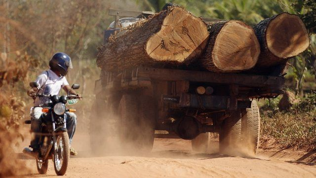 A man on a motorbike looks at a truck as it transports illegally-harvested Amazon rainforest logs on a road near protected indigenous land near the Arariboia Indigenous Reserve, Maranhao state, Brazil.