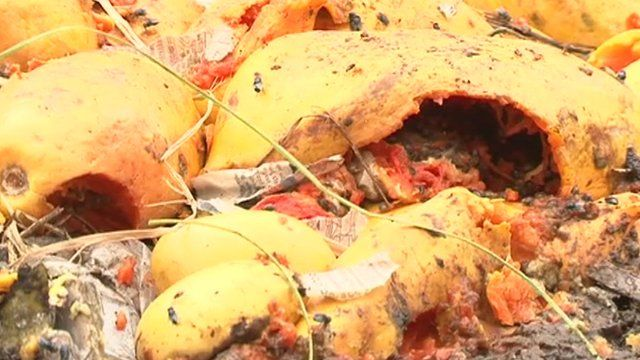Rotting vegetables and fruit