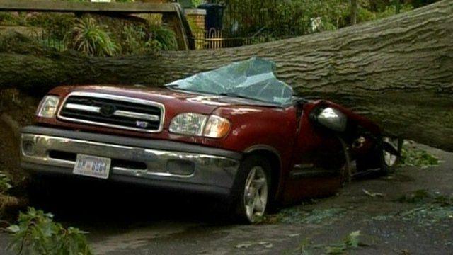Storm damages car in Washington DC