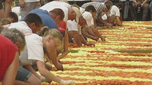 Volunteers lay Belgian flowers to create giant carpet inspired by Africa